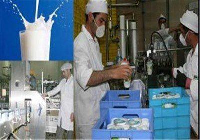"""شیر توزیعی در استان گستان با """"ویتامین D"""" غنیسازی میشود"""
