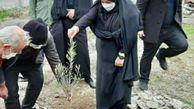 غرس نهال به یاد شهدا در شهرستان کردکوی