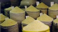 قیمت جدید برنج در بازار + جدول