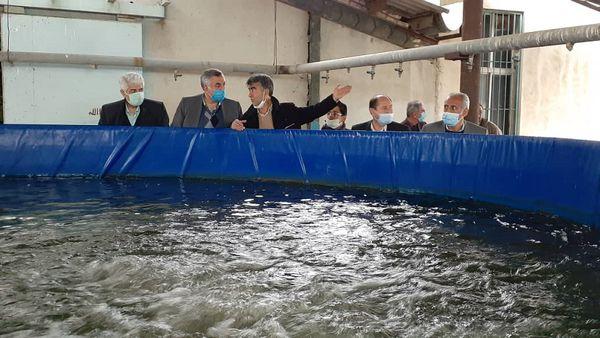 مرکز بازسازی ماهیان خاویاری شهید مرجانی از گذشته تاکنون باعث افتخار شیلات بوده است