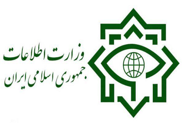 اثرگذاری نظام دشمن رابی تاب کرده است/وزارت اطلاعات چتری برای مردم