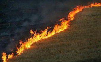 ۳۰ هکتار مزرعه گندم در شهرستان کلاله در آتش سوخت