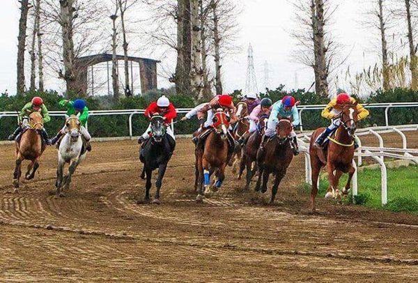 مسابقات اسبدوانی گنبدکاووس در ایستگاه پایانی
