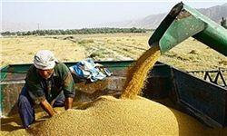 افزایش قیمت ادوات کشاورزی با قیمت محصولات همخوانی ندارد