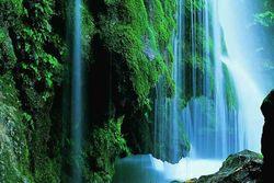 تنها آبشار خزهای جهان در دل جنگلهای گلستان+ تصاویر
