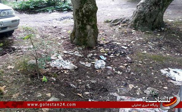 پارک ملی گلستان3