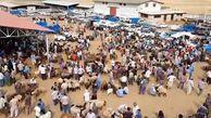 خرید و فروش ۵ هزار راس دام در دومین میدان عرضه دام زنده کشور