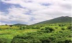 بیش از ۸۹ هکتار از جنگلهای گلستان از متجاوزان پس گرفته شد