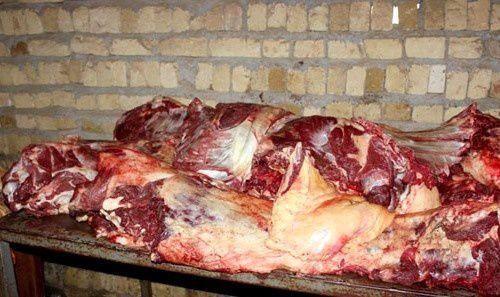 معدوم سازی ۳۰۰ کیلوگرم گوشت قرمز فاسد در گرگان