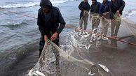 صید 251 تن انواع ماهی استخوانی از آبهای گلستان