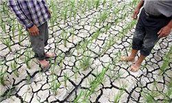 ۳۵ هزار هکتار از اراضی گلستان امسال آب ندارند