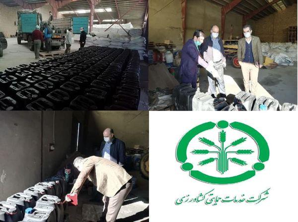 توزیع45000 لیتر بذر مال روی برای مصرف بذر گندم در گلستان