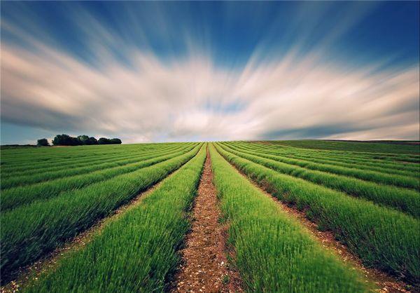 هشدارهای هواشناسی به کشاورزان تا ۱۹ آبان