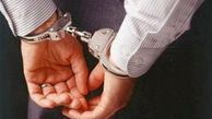 دستگیری 5 سارق و کشف 19فقره سرقت