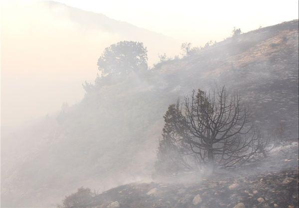 افزایش ۲برابری حریق جنگل های گلستان/۸۵۰ کیلومتر آتش بُر ایجادشد