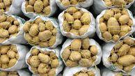 تولید ۱۱۰ هزار تن سیب زمینی امسال در گلستان