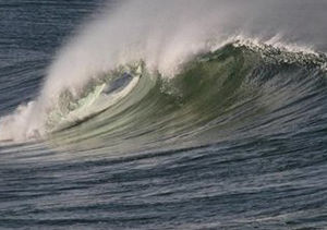 توصیه اعضای کمیته هواشناسی دریایی به فعالین محیط زیست و شیلات