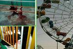 عکس/ سقوط مرگبار چرخ و فلک در شهربازی برازجان