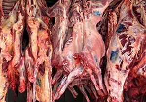 کشف گوشت فاسد در گلستان