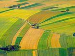 مخالفان: مشکل قانونی در تعیین قیمت خرید تضمینی محصولات کشاورزی وجود ندارد/ موافقان: افزایش حمایت از کشاورزان و تعیین قیمت تضمینی محصولات با اصلاح قانون