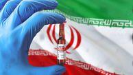 ۵ واکسن ایرانی کرونا مجوز مصرف اضطراری دارند