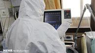۴۰ درصد بیماران کرونایی گلستان در گنبدکاووس بستری هستند