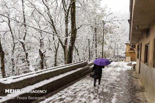 خودنمایی زمستان در گلستان/ برف و بوران فراگیر می شود