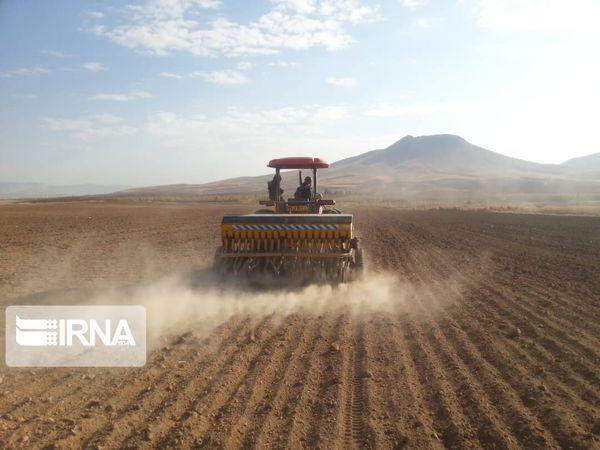 قرارداد کشت گندم در ۲۵۰ هزار هکتار از اراضی گلستان بسته شد