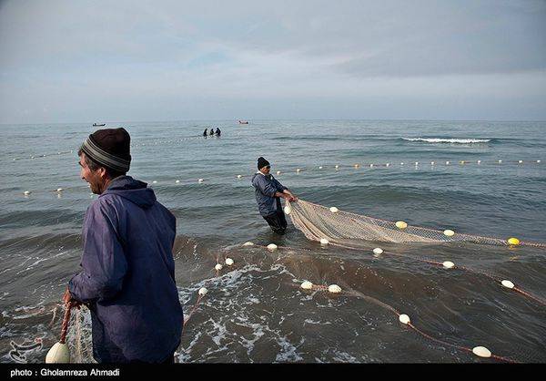 گرگان  فصل صید در دریای خزر تمدید شد
