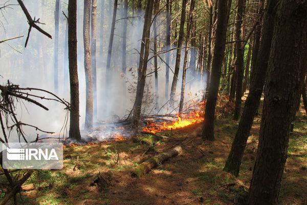 گلستان جزو استانهای پرخطر وقوع آتش در جنگل است