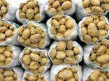 خرید حمایتی سیب زمینی به ۵ هزار و ۶۰۰ تن رسید
