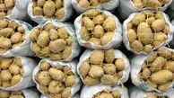 بسته شدن مرز ترکمنستان،صنایع تبدیلی را ازخرید سیب زمینی تازه چین منصرف کرد