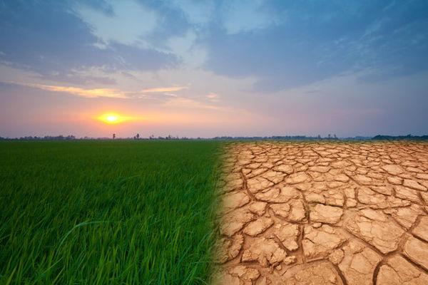 افزایش روزهای داغ در گلستان/آماده مقابله با بحران آب و هوا نیستیم