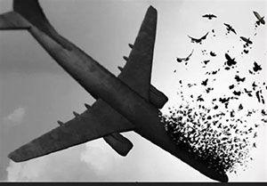 تشییع شهدای گلستانی سانحه هواپیمای اوکراین