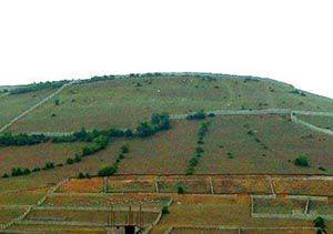 بازپس گیری اراضی ملی علی آباد کتول