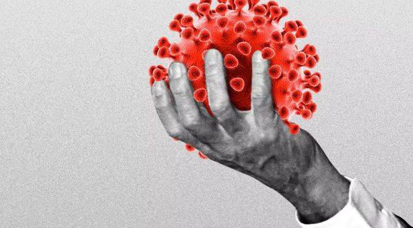 «درمان کرونا فقط با قرص!»؛ باکتری کشنده شایعه این بار از گلستان