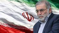 ضعف وزارت خارجه در ماجرای ترور شهید فخریزاده