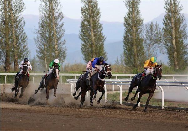 هفته سیزدهم مسابقات اسبدوانی کورس پائیزه در گنبدکاووس برگزار شد