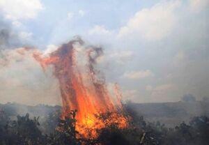 آتشسوزی بزرگ در جنوب سرزمینهای اشغالی +فیلم