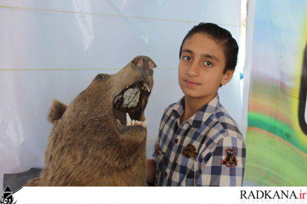حواشی تصویری جشنواره بازیهای بومی محلی در کردکوی