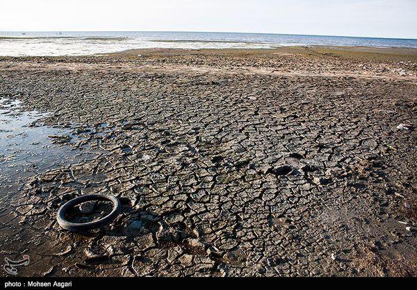 وقتی محیطزیست مانع نجات خلیج میشود+ فیلم