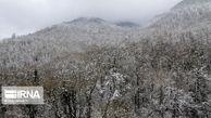 ماندگاری برف در گلستان رو به کاهش است