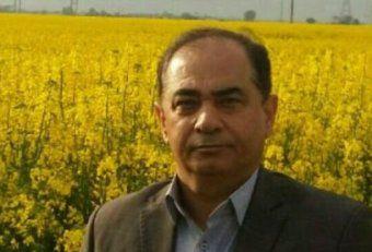 قیمت تضمینی پنبه و دانه های روغنی در سال زراعی 96 / افزایش 10 درصدی قیمت