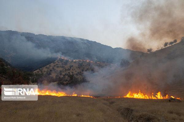 همکاری بسیج و محیط زیست برای مقابله با آتشسوزی پارک کلی گلستان