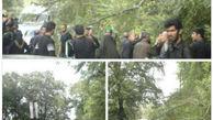 عکس/ حادثه خونین سقوط درخت بر روی عزاداران