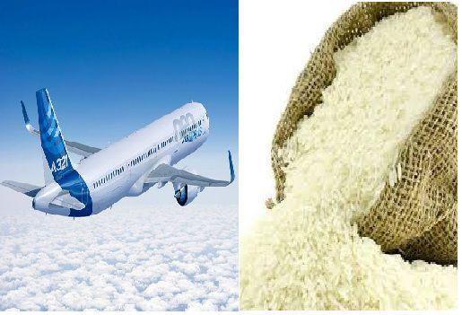 از سقوط هواپیما تا قیمت برنج