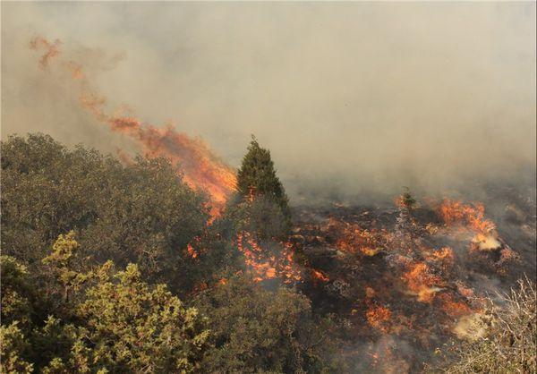 مناطق جنگلی شهرستان گالیکش طعمه حریق شد