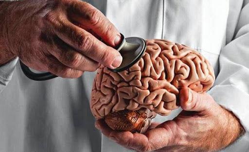 کدام قسمت مغز موجب تغییر میزان هوشیاری میشود