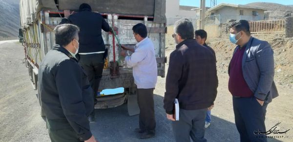 توقیف خودروی فاقد مجوز حمل دام در ایست و بازرسی تیل آباد آزادشهر
