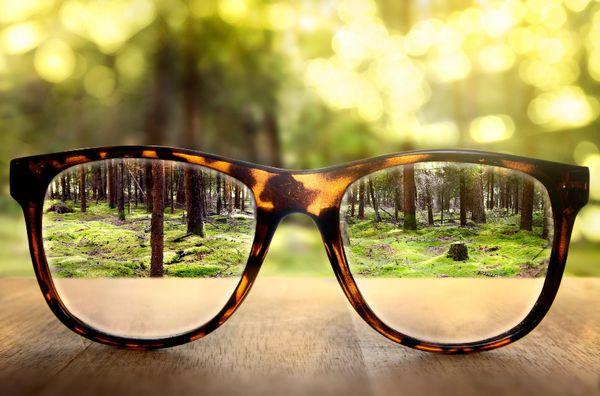 خوراکیهایی که بینایی شما را تقویت میکند